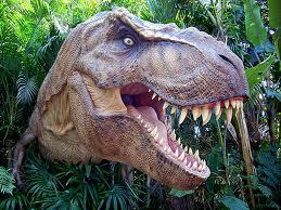 Tyrannosaure rex entier