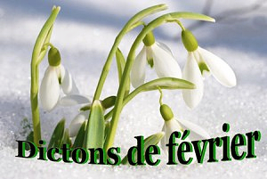 Dictons_fevrier-300x201