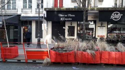 Mob végétal rue hotel st paul