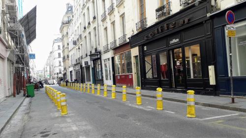 Poitou quilles jaunes 21 04 21