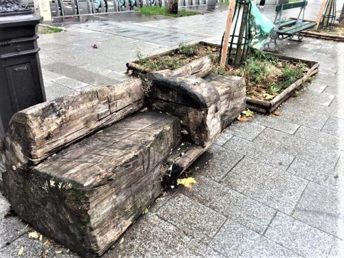 Banc bois brut pied d'arbre